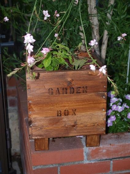 P6030023 ガーデンボックス