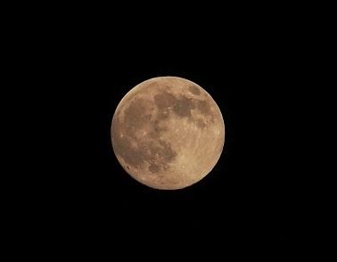 P7080006 明日が満月