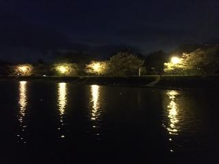20170430_東山湖_005