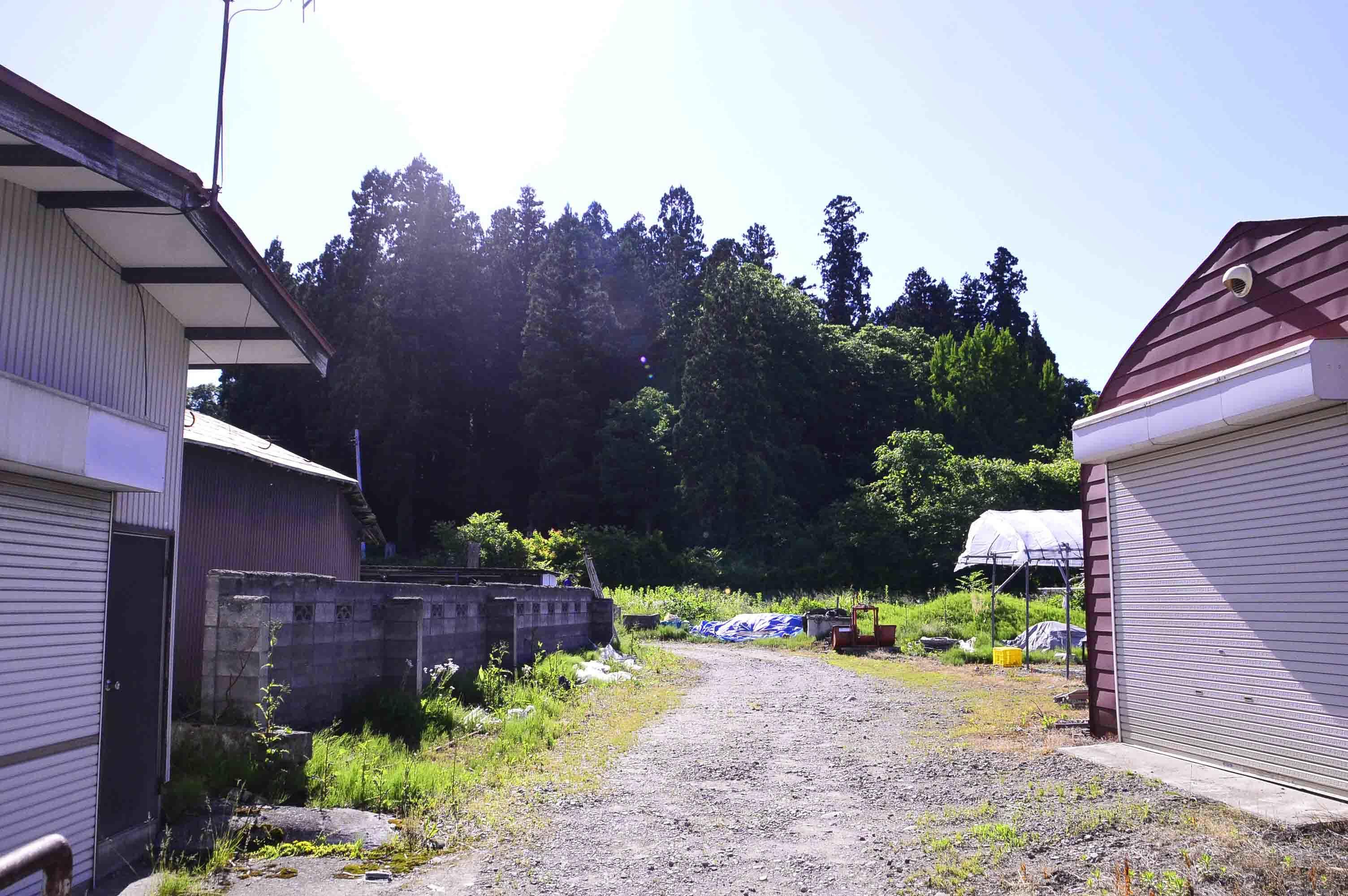 成島館遠景
