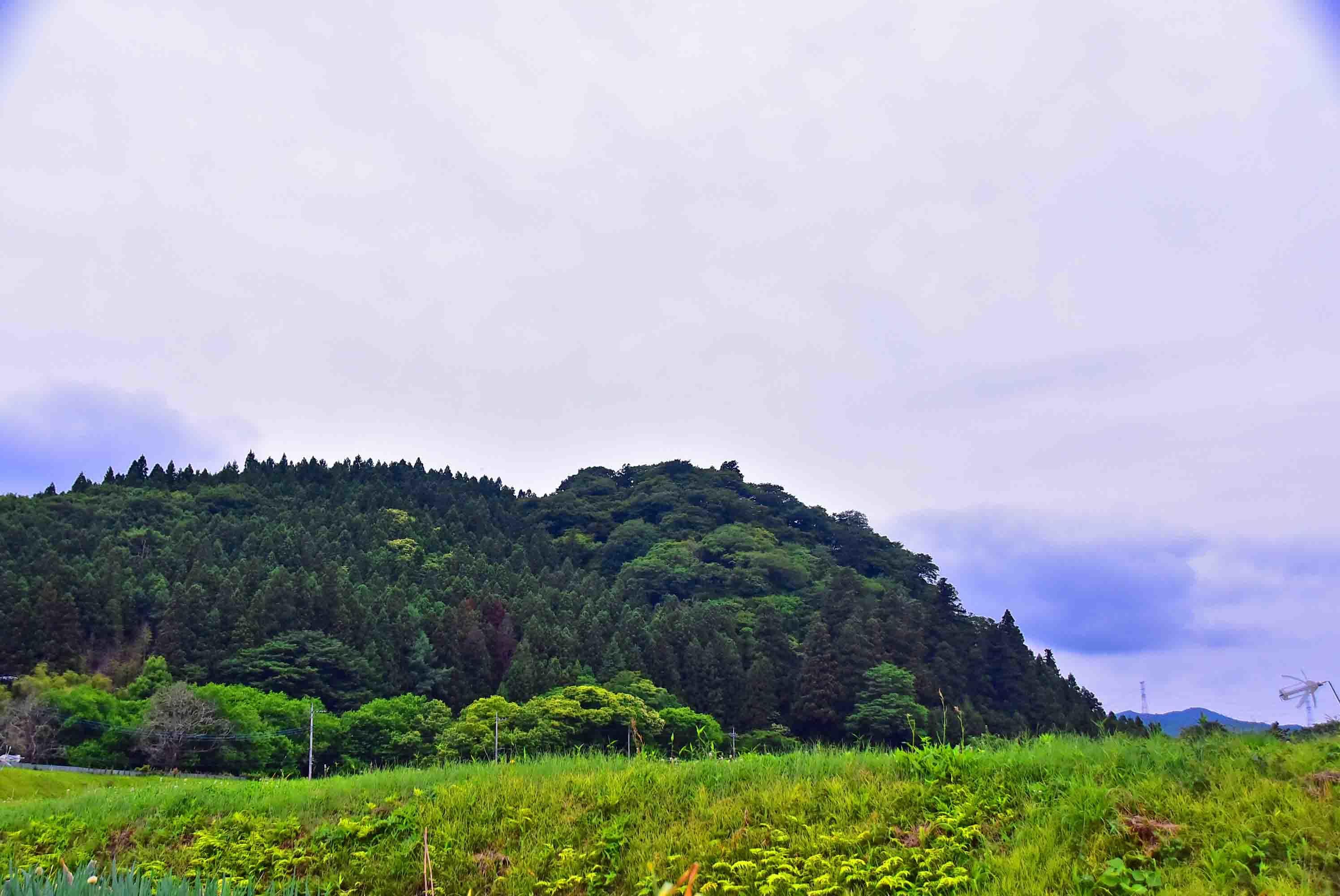 大名神山 遠景