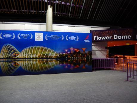 シンガポール2016.12ガーデンバイザベイ