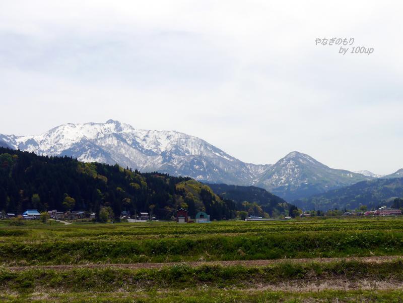 2017年5月3日新潟県