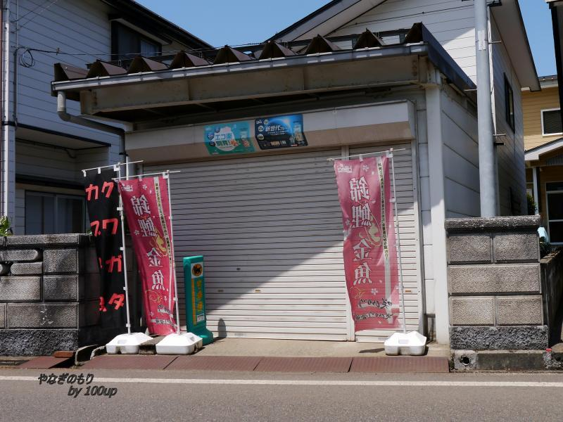 2017年5月4日新潟県