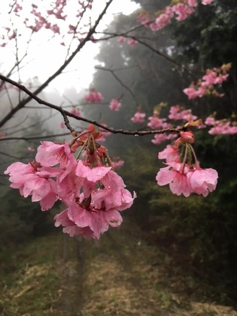 y_blog_photo_041.jpg