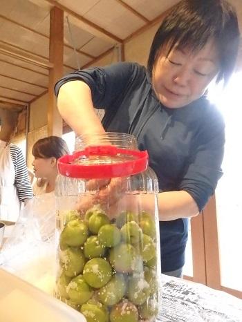 焼酎に梅をくぐらせ瓶に塩と入れる