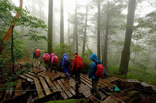 霧の縄文杉ルート