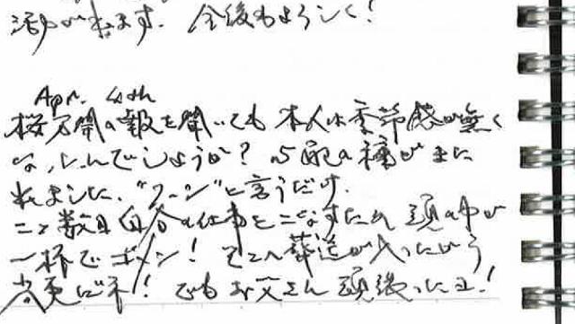 日記(お父さん頑張ったよ) (640x361)