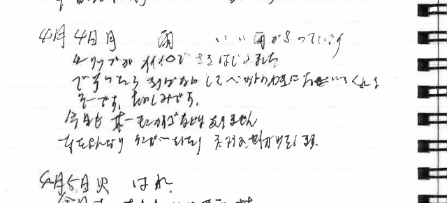 妻日記6 (640x291)