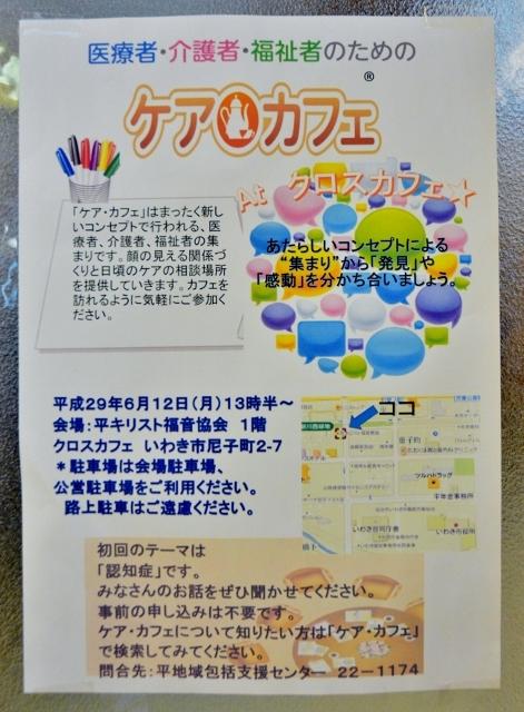 DSC_5000 (471x640)