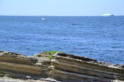 なぎさから見た海の遠景