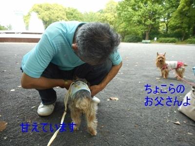 DSCN1032_20170514204549109.jpg