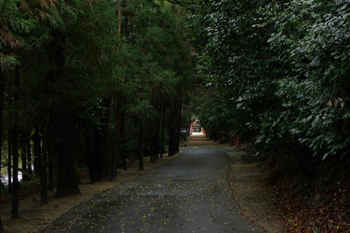 大和の国の神社  廣瀬神社  3