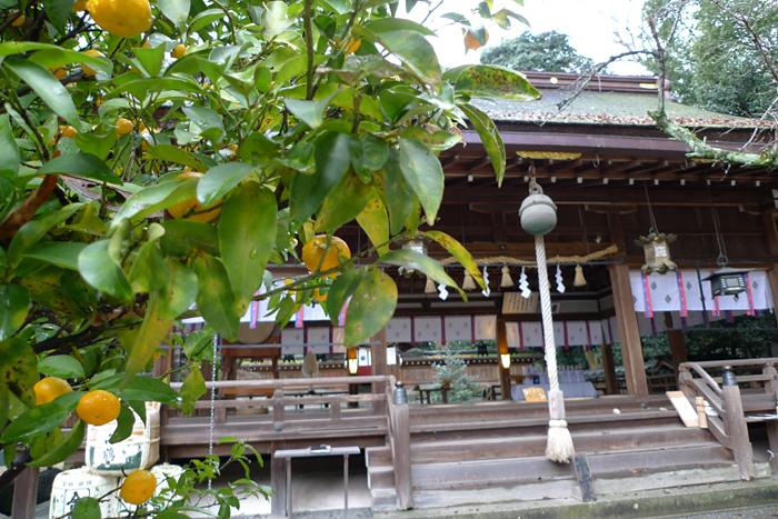 大和の国の神社  廣瀬神社  12