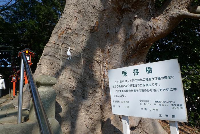 常陸国の神社  吉田神社  6