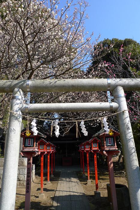 常陸国の神社  吉田神社  14