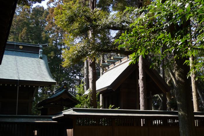 常陸国の神社  吉田神社  28