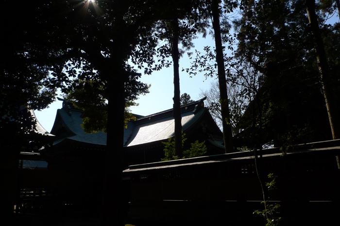 常陸国の神社  吉田神社  31