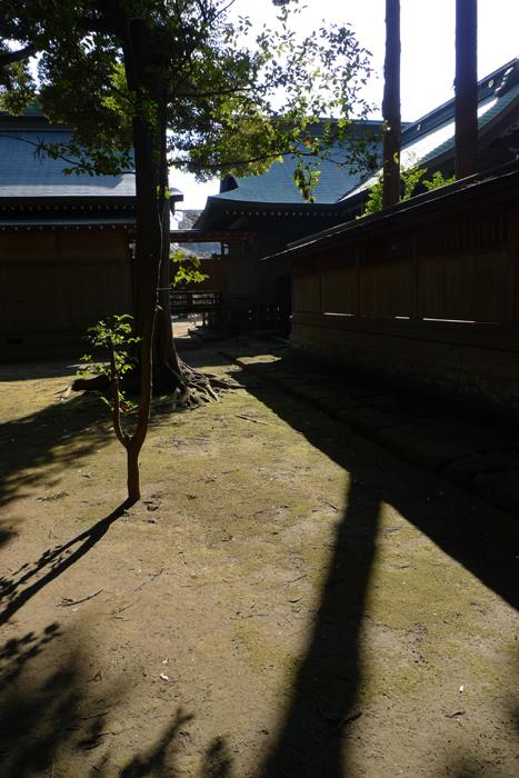 常陸国の神社  吉田神社  32