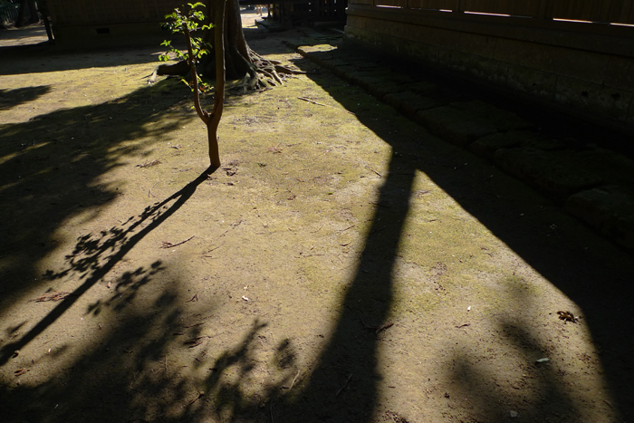 常陸国の神社  吉田神社  33