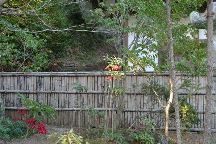 常陸国の神社  筑波山神社  24