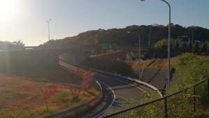 阪神高速。
