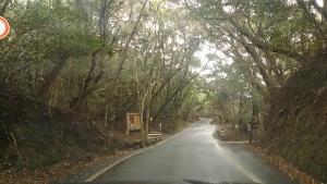 足摺岬付近の道路