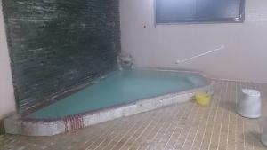 下呂温泉みのり荘 中浴場