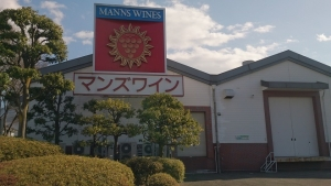 マンズワイン醸造所1