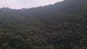 静響の宿 山水 部屋からの眺望2