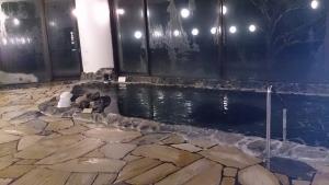 屋久島いわさきホテル 大浴場 内湯