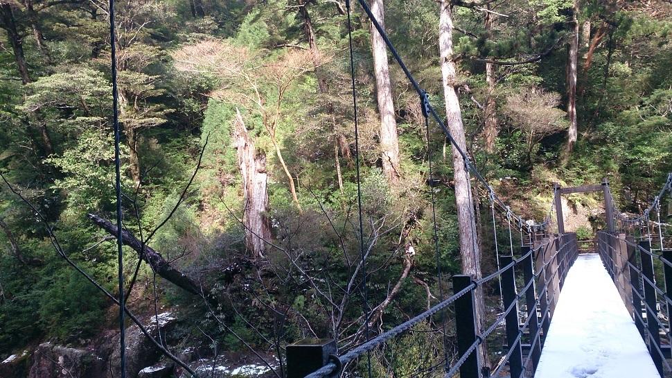 ヤクスギランド 荒川橋2
