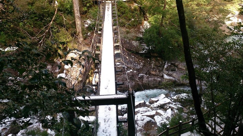 ヤクスギランド 荒川橋3