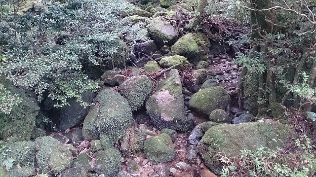 白谷雲水峡22