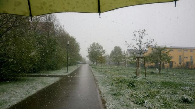 雪降る四月1