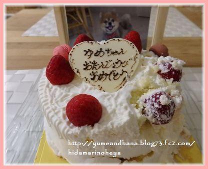 001-ゆめ誕生日170526-2104