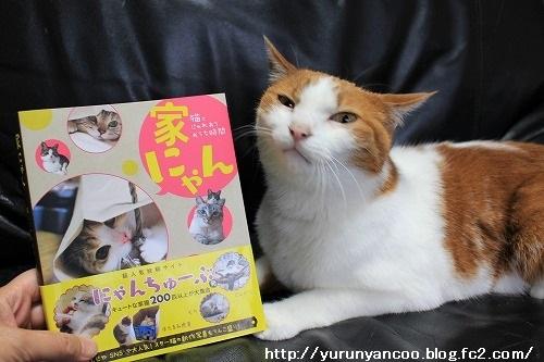 ブログNo.949(風来堂書籍「家にゃん」に掲載されました♪)2