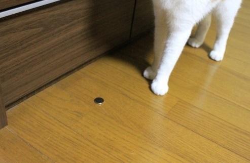 ブログNo.997(また、いいもの見っけ?)6
