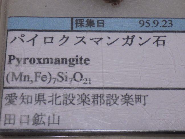 RIMG1197.jpg
