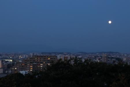 20170609_mo10.jpg