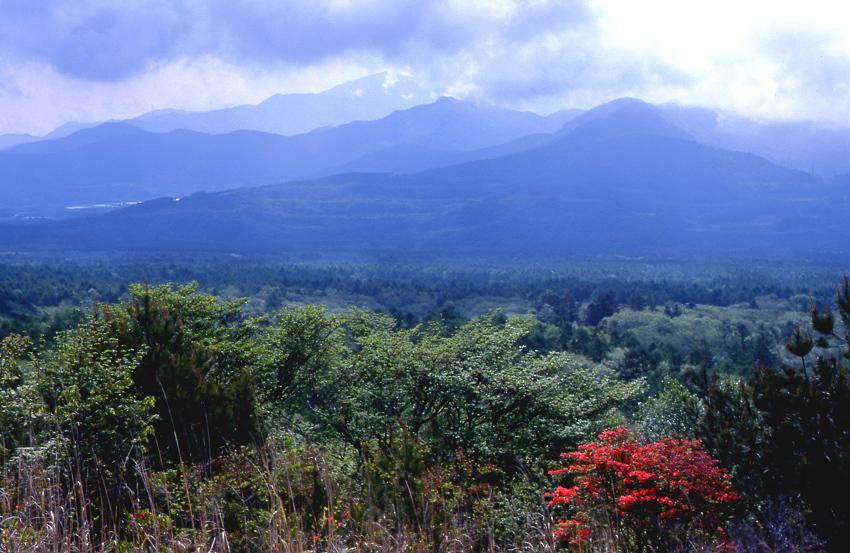 八ヶ岳山麓02