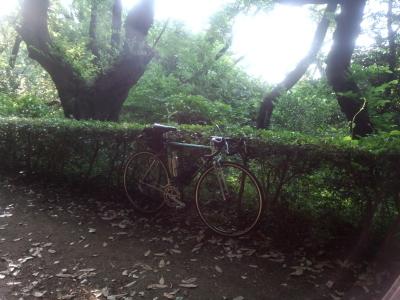 photo_colnago_sinryoku2017_7_2017_0530.jpg