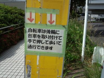 photo_derosa_kisaradunihonnbasi_32_2017_0604.jpg
