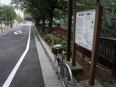 photo_randner_megurokawa_17_0701_2017_0701.jpg