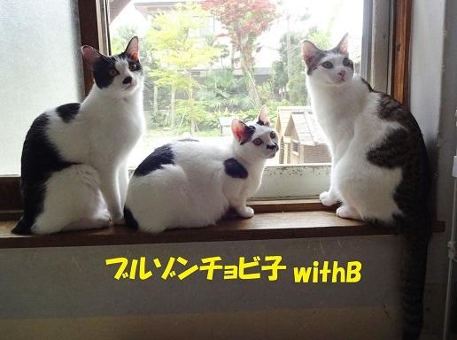ラビ・チョビ子・げんじ2