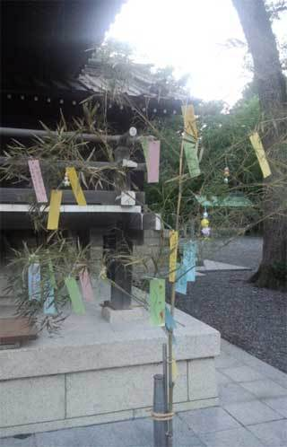 20170630_y_nagoshi_004.jpg