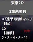 he528_2_2.jpg