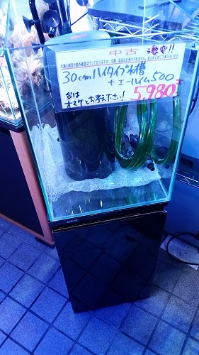 s-20170517_185618.jpg