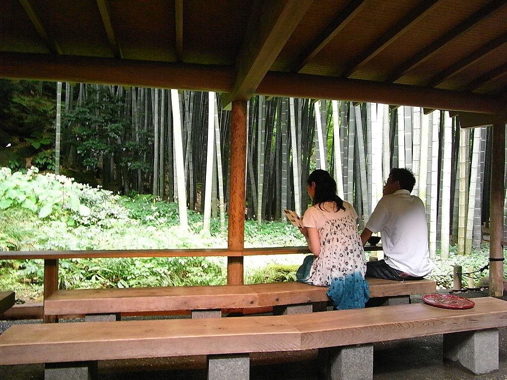 竹林と石庭_2