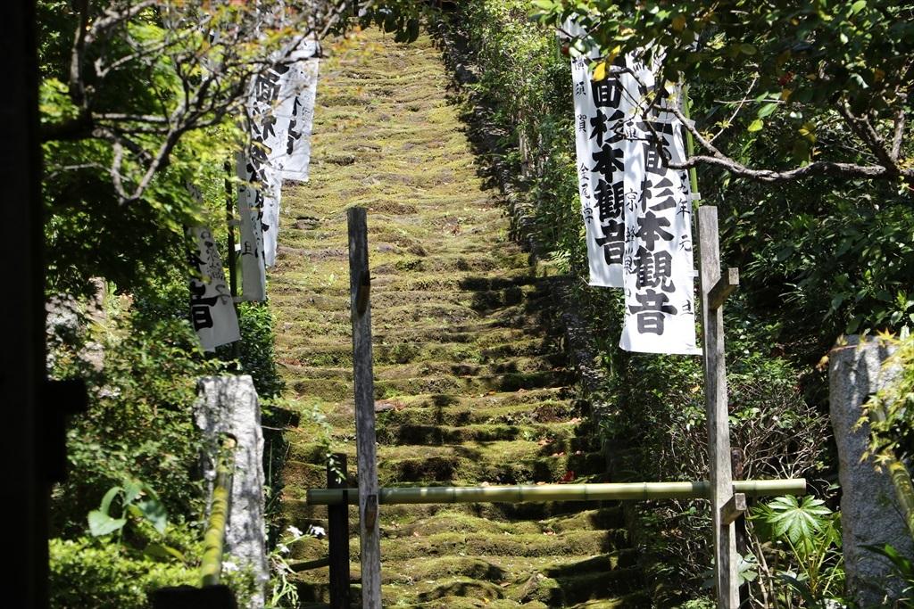 鎌倉石の苔生した石段_1